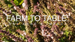 Farm To Table | One Acre's Impact | Documentary Film