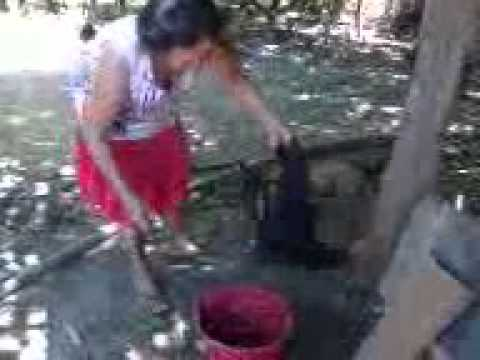 Vó Maria matando galinha