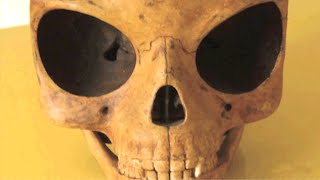 Alien Skull Found?