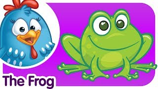 The Frog Doesn't Wash His Feet - Lottie Dottie Chicken - Kids songs and nursery rhymes in english
