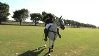 Polo 101 with Nacho Figueras (Extended Version)