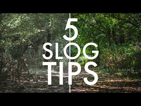 Xxx Mp4 5 SLOG Tips Every Sony Shooter Should Know SLOG2 SLOG3 3gp Sex