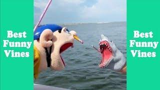 Funny Shark Puppet Compilation 2019 | Shark Puppet Clips  - Best Funny Vines