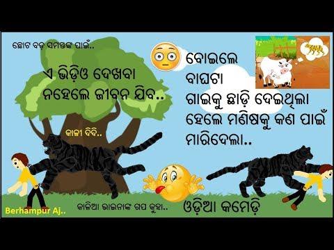 Xxx Mp4 Berhampuriya Odia Funny Story Odia Children Story The Man And Tiger Comedy Video Berhampur Aj 3gp Sex