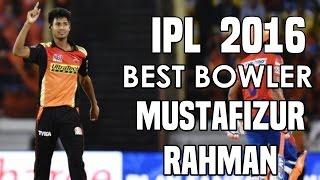 ধোনি, যুবরাজকে হারিয়ে আইপিএলের সেরা একাদশে মুস্তাফিজুর রহমান । Mustafizur Rahman in IPL Best XI