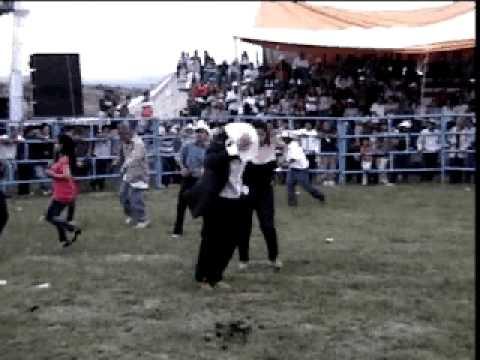 TOCUARO GTO baile en el jaripeo