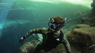 Found Secret Swimming Hole Underneath a Florida Swamp! (Beware of Alligators)