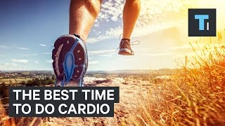 An exercise scientist reveals the best time to do a cardio workout