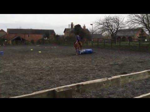 Mia Rodley Parelli Level 3 Freestyle PASSED 3++