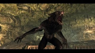 Animal Transformation in Video Games Compilation [HD]