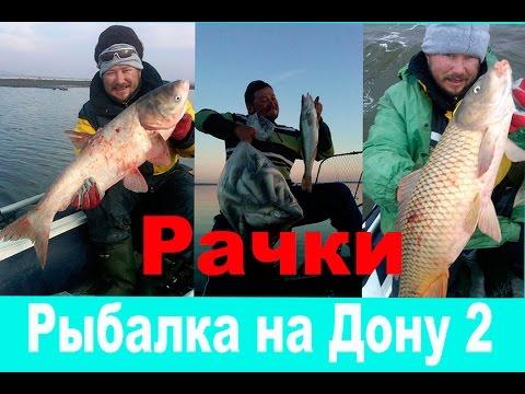 рыбалка бери  дону во  воронеже видео 2016