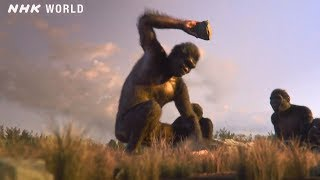 3. Dawn of the Stone Age - OUT OF THE CRADLE [人類誕生CG] / NHK Documentary