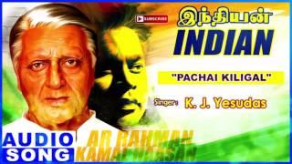 Pachai Kiligal Song | Indian Tamil Movie Songs | Kamal Haasan | Manisha Koirala | AR Rahman