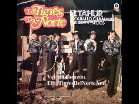 Los Tigres del Norte Ven mi corazón version original