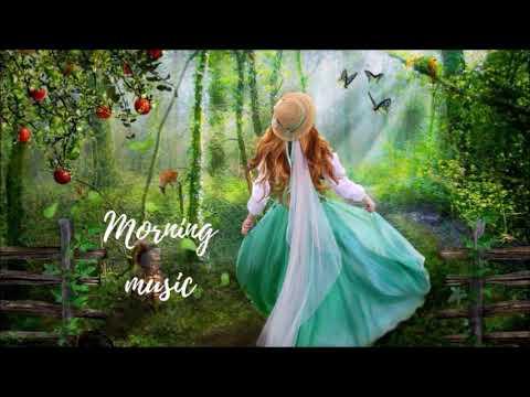 Morning Happiness music ดนตรีผ่อนคลายยามเช้า เริ่มวันใหม่อย่างมีความสุข