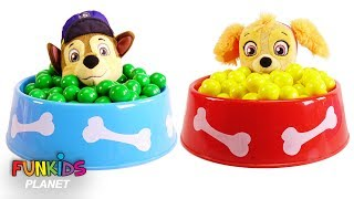 Learning Colors Videos for Kids: Poppy Trolls & Paw Patrol Dog Food Bowl Full of Magical Gumballs