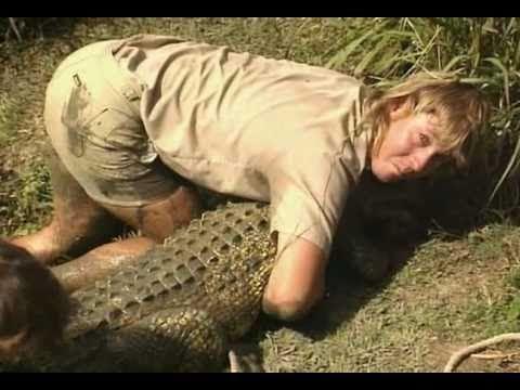 The Crocodile Hunter Steve s Greatest Crocodile Captures 1 8