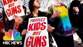Parkland Survivors And Lawmakers Discuss Gun Violence Legislation | NBC News