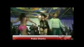 رقص وسخ اخر حاجة بيشذوا وبيحسسوا علي بعض شاهد قبل الحذف _ Raks Sharky