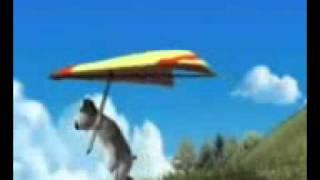 Bunty Flying in Sky.3gp