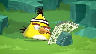 """Angry Birds Toons: """"Chuck Time"""""""
