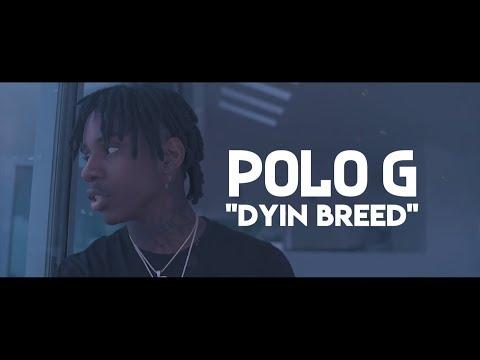 Polo G Dyin Breed Lyric Video