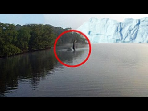 Loch Ness Monster Was Caught On