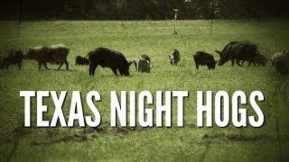 Texas Night Hogs - Hog Hunting with Night Vision