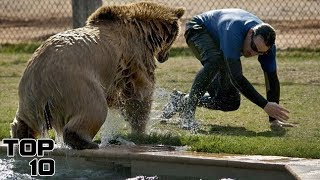 Top 10 Horrifying Zoo Accidents Caught On Camera