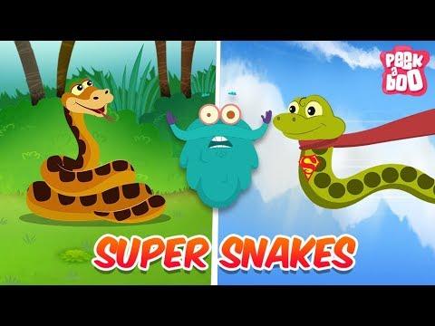 Xxx Mp4 Snakes The Dr Binocs Show Best Learning Videos For Kids Peekaboo Kidz 3gp Sex