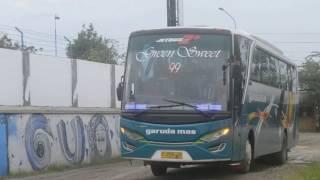 Full Klakson Telolet dan Strobo Bus Garuda Mas