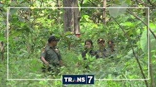 INDONESIAKU - HUTAN JATI BOJONEGORO MENANGIS (9/8/16) 3-2