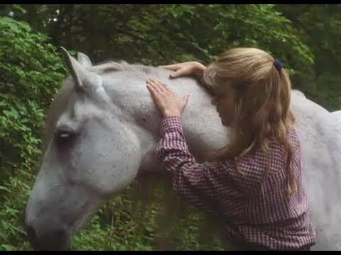 El Caballo de la Princesa (1997)