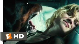 Don't Breathe (2016) - Trapped in a Car Scene (9/10)   Movieclips