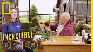 Flapping Pheasant - Season 3, Episode 8 | Coffee Break with Dr. Pol