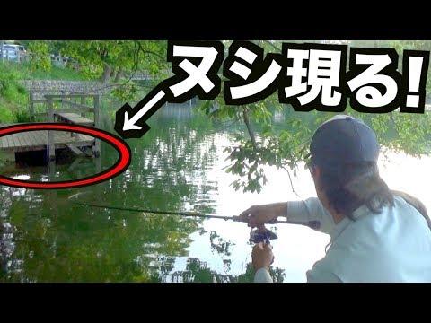 Xxx Mp4 「ぬし」が居るとは知らずに釣りをしたらリールが悲鳴をあげた!! 3gp Sex