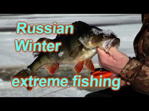 рыбалка в марте в вологде