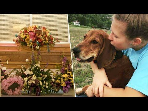 Xxx Mp4 12 Year Old Virginia Girl Is Buried In Casket With Her Dog 3gp Sex