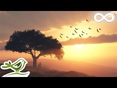 Beautiful Romantic Music Relaxing Music Guitar Music Violin Music Cello Music Piano Music ★103