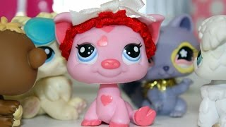 LPS Love Doctor 101 S2 Episode 9: The Final