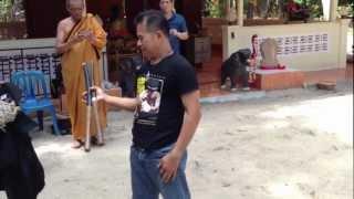 มวยไทยไชยาและอาวุธไทย โดยครูแปรง