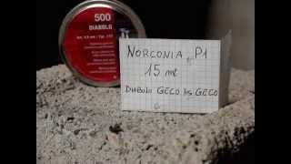 NORCONIA P1
