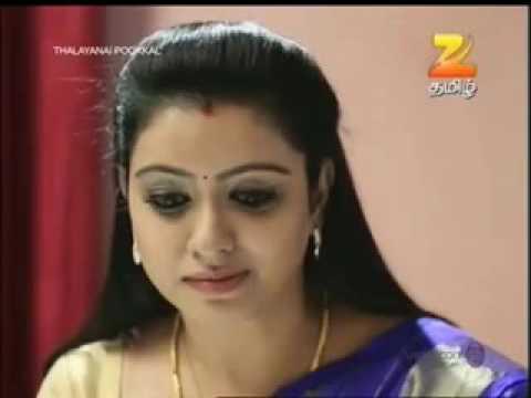Ilayathalapathy Vijay mass in TV serial