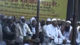 Muhammad Mamunur Rashid Mahfil 2011