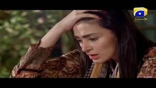Laut Kay Chalay Aana - Episode 17 | Har Pal Geo