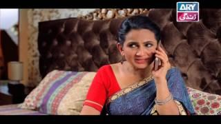 Haal-e-Dil - Episode 181 | Top Pakistani Dramas