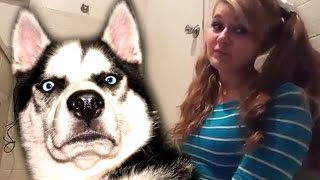 Girl Explains Why Women Should Have Intercourse With Dogs