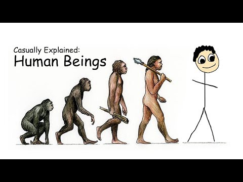 Casually Explained Human Beings