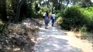 Palmizana Island