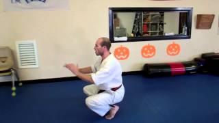 How To Do A Kip Up -Webster Martial Arts -  Decatur, AL & Moulton, AL